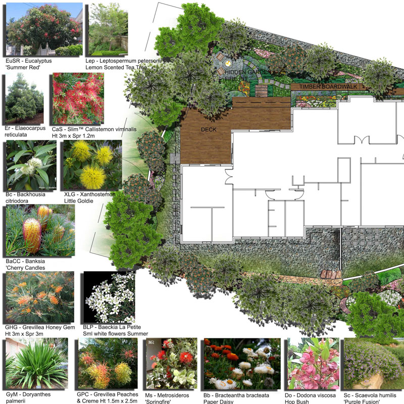 Landscape garden design gold coast for Garden design queensland