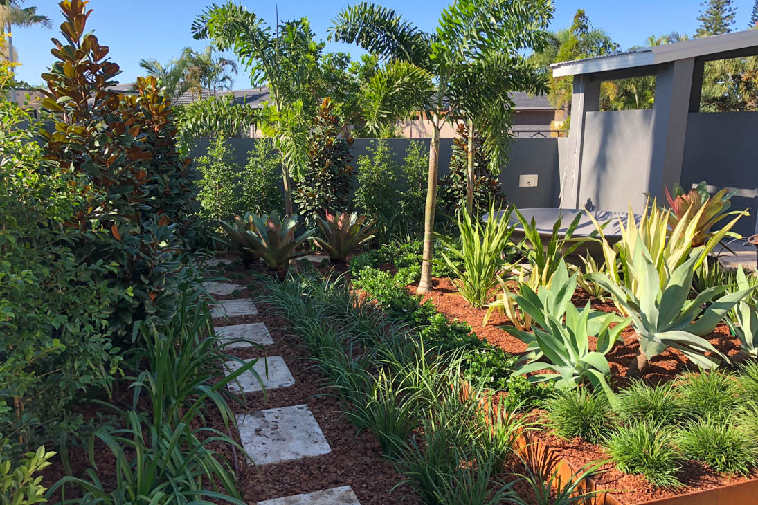 After-Bundall Landscape Design
